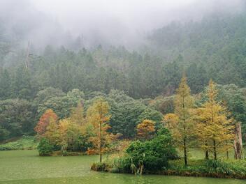 宜蘭熱門新攝點:北橫上的明珠 明池國家森林遊樂區
