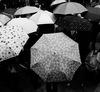 Sony NEX-5R x 張國耀:創造黑白影像的極限 街拍攝影 體驗分享