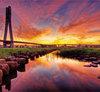 新興攝點 新北大橋 五個最佳拍攝地點分享
