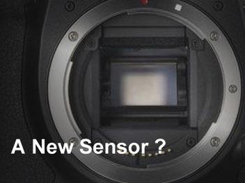 說好的 類 Foven 感光元件 呢?Canon 7D Mark II 更詳細 規格 傳言搶先看