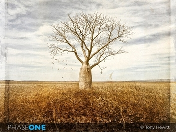 Phase One邀請攝影大師 7/13來台 – Tony Hewitt世界之美藝術攝影 亞洲巡講