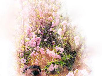 『攝影師』Jess Pollock:利用雙重曝光創造印象主義攝影作品