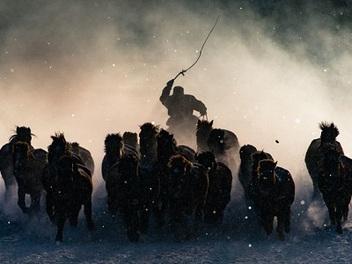 2016國家地理年度旅行攝影師大賽獲獎作品欣賞