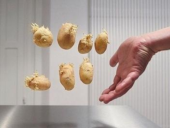 將攝影棚搬進廚房,拍出無重力感的食物漂浮系列