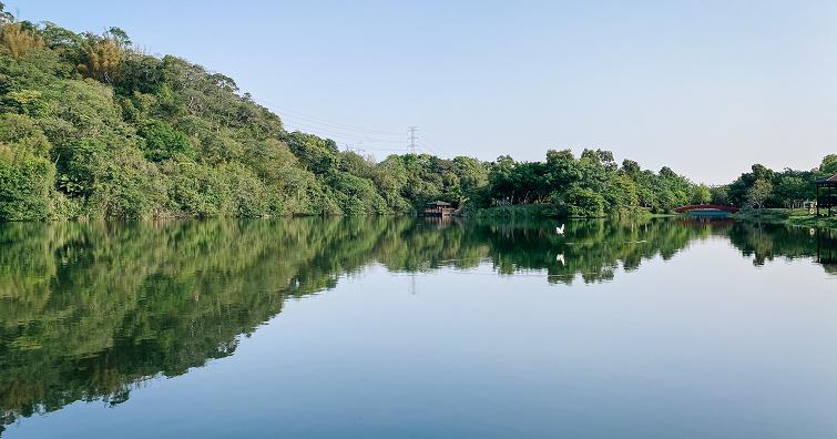 【攝影新景點】三坑自然生態公園,桃園中的世外桃源